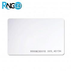 تگ RFID کارتی بزرگ ساده 125KHz